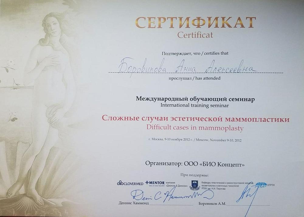 Боровикова_Сертификат11