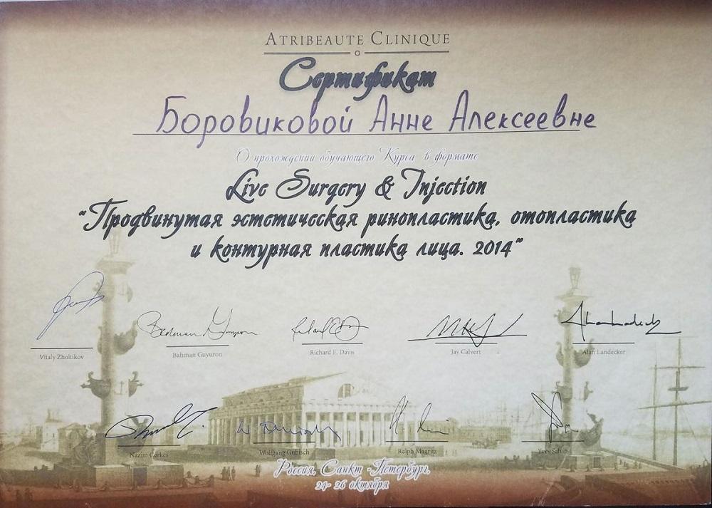 Боровикова_Сертификат19