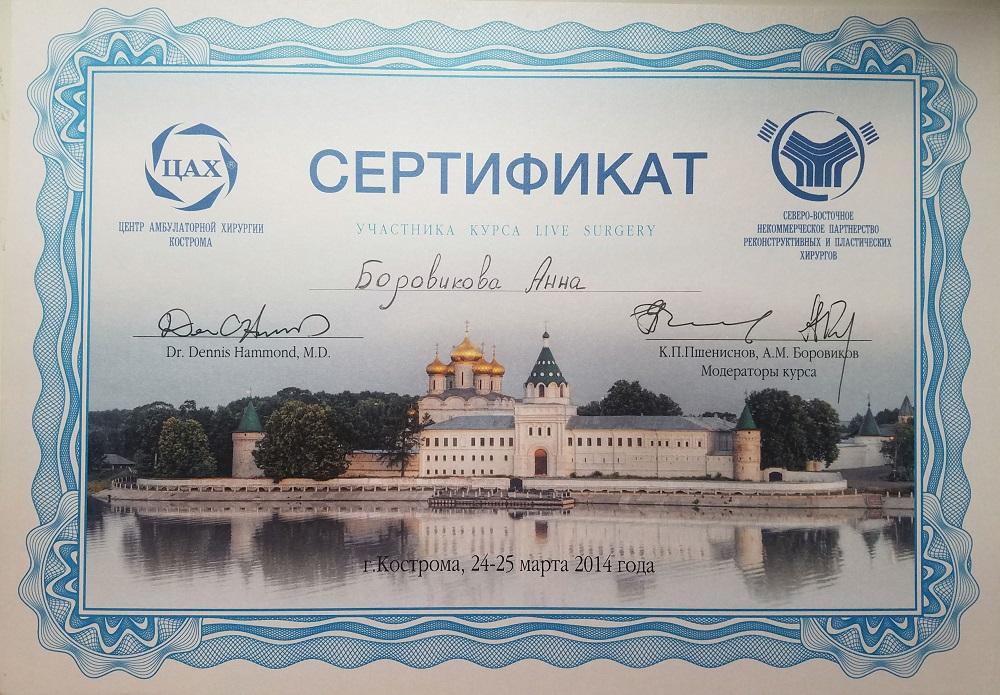 Боровикова_Сертификат8